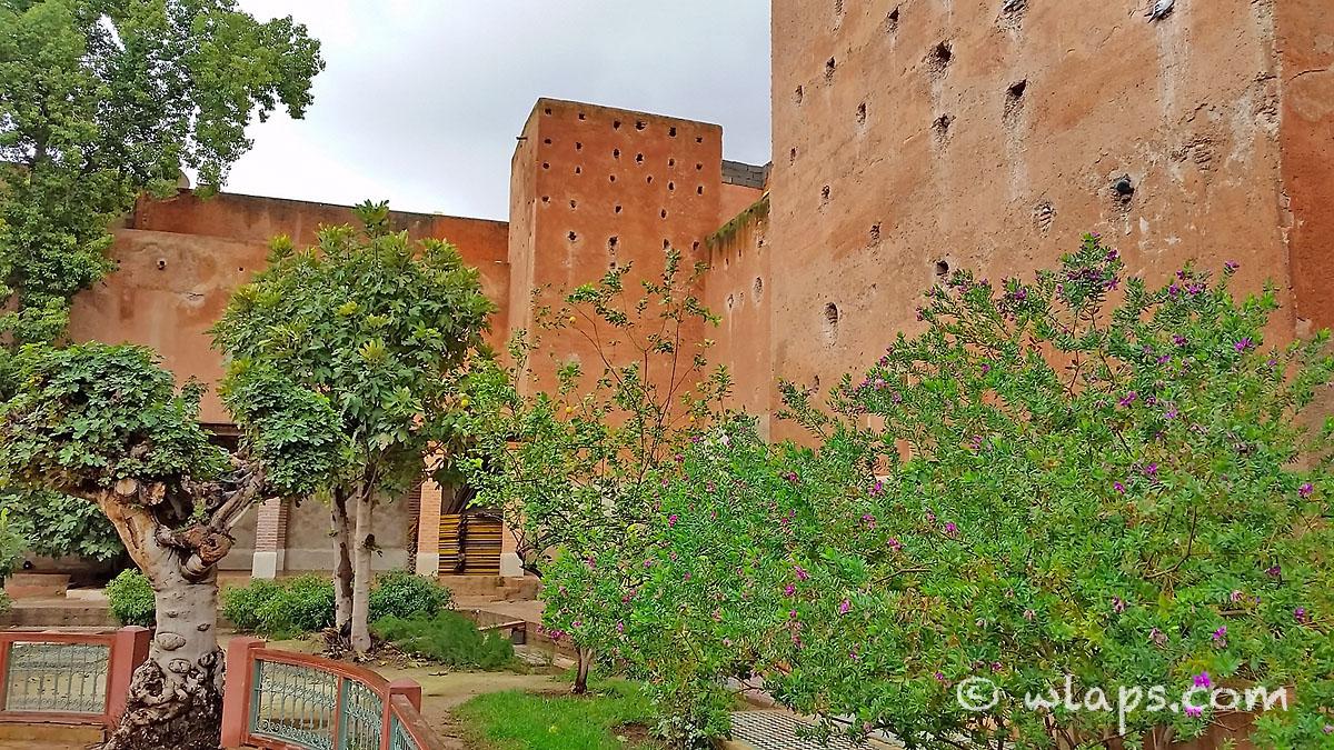 arbres-tombeaux-saadiens-carnet-voyage-maroc-marrakech