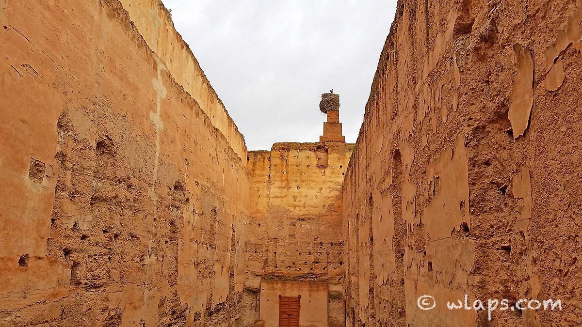 cigogne-palais-badia-carnet-voyage-maroc-marrakech