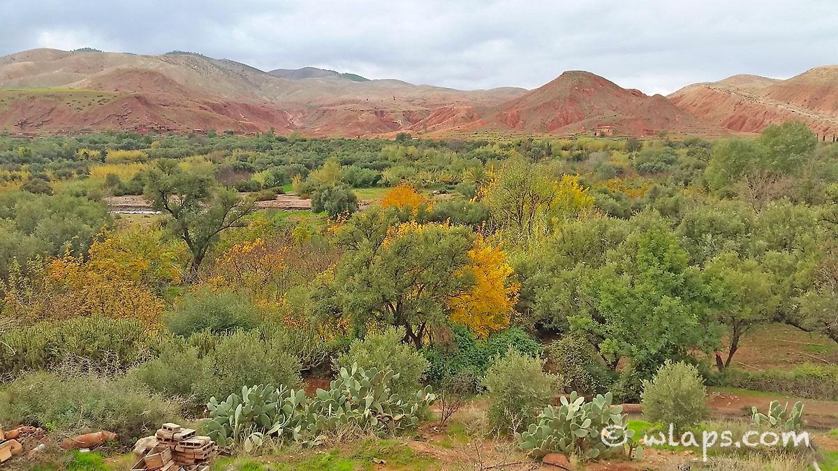 couleurs-photo-carnet-voyage-marrakech-maroc