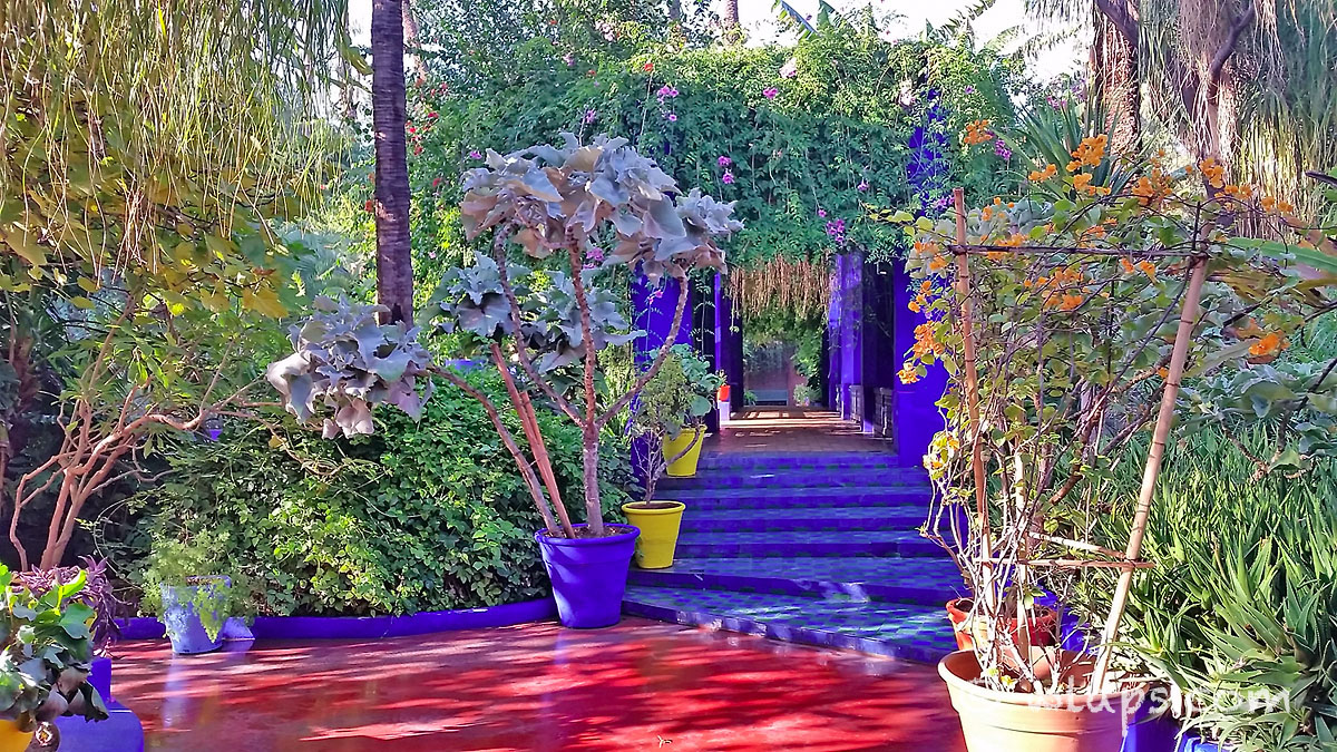 Passage Jardin Majorelle Carnet Voyage Maroc Marrakech Wlaps