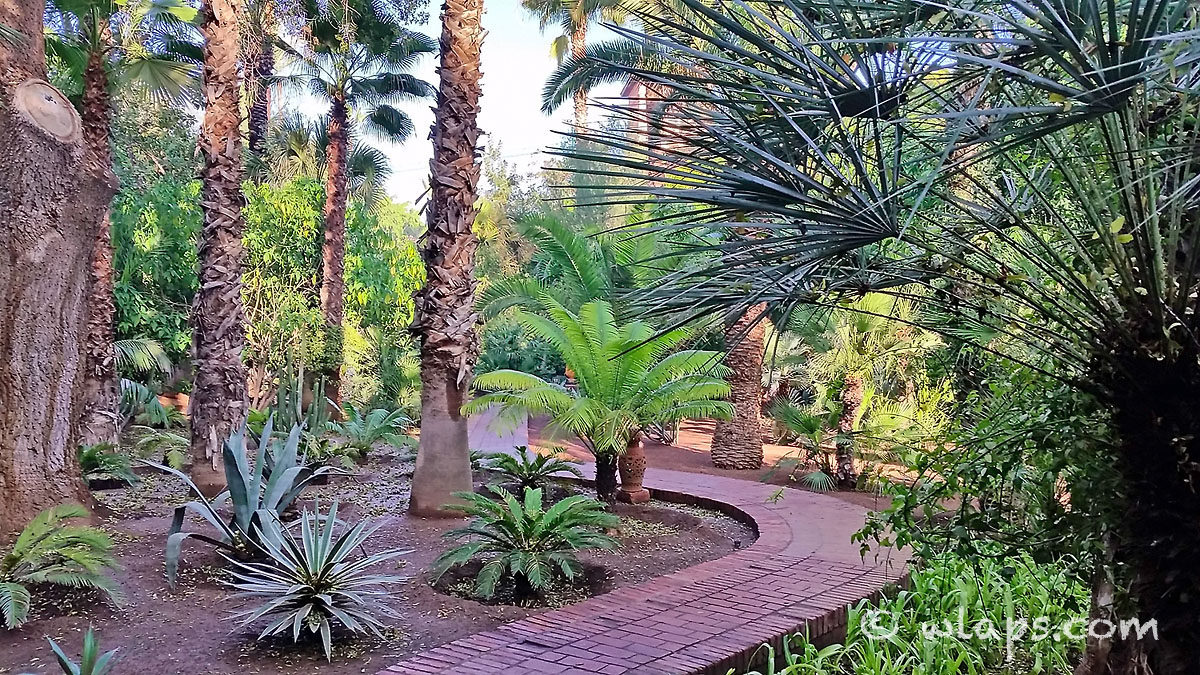 paves-jardin-majorelle-carnet-voyage-maroc-marrakech