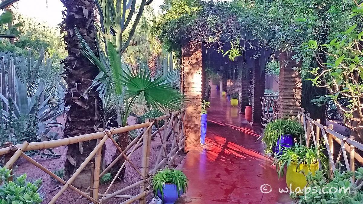 photo-jardin-majorelle-carnet-voyage-maroc-marrakech