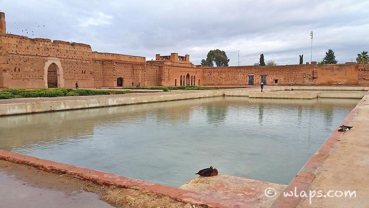 piscine-palais-badia-carnet-voyage-maroc-marrakech