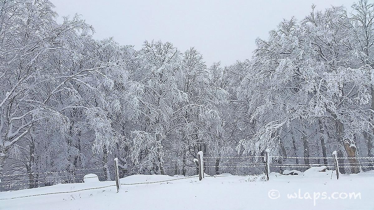 1-photo-village-aubrac-neige-brouillard