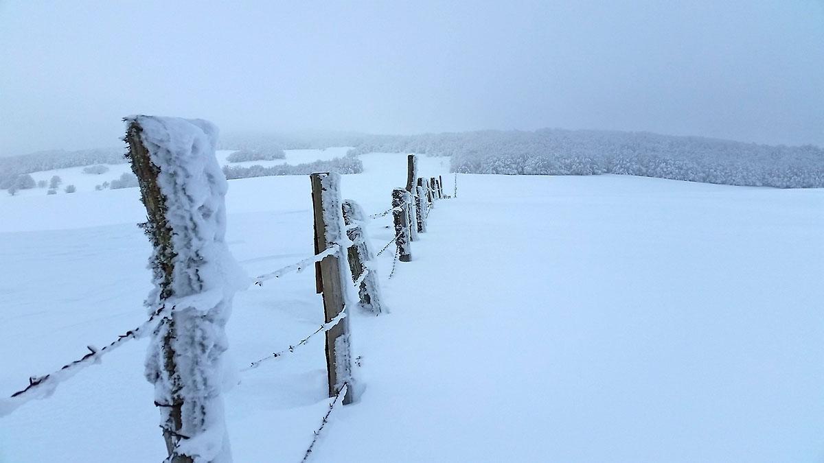 balade-photos-plateau-aubrac-neige-1