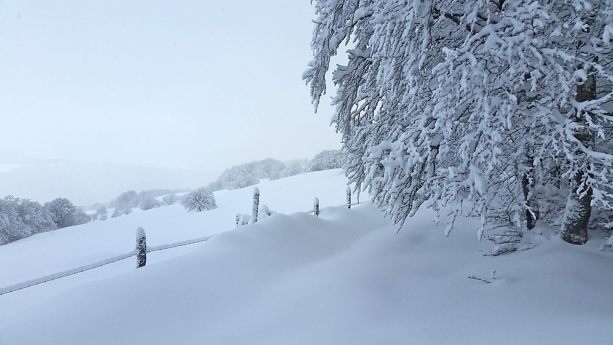balade-photos-plateau-aubrac-neige-11