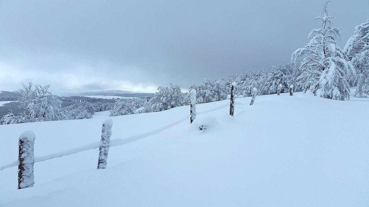balade-photos-plateau-aubrac-neige-12