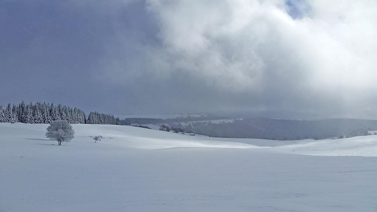 balade-photos-plateau-aubrac-neige-4