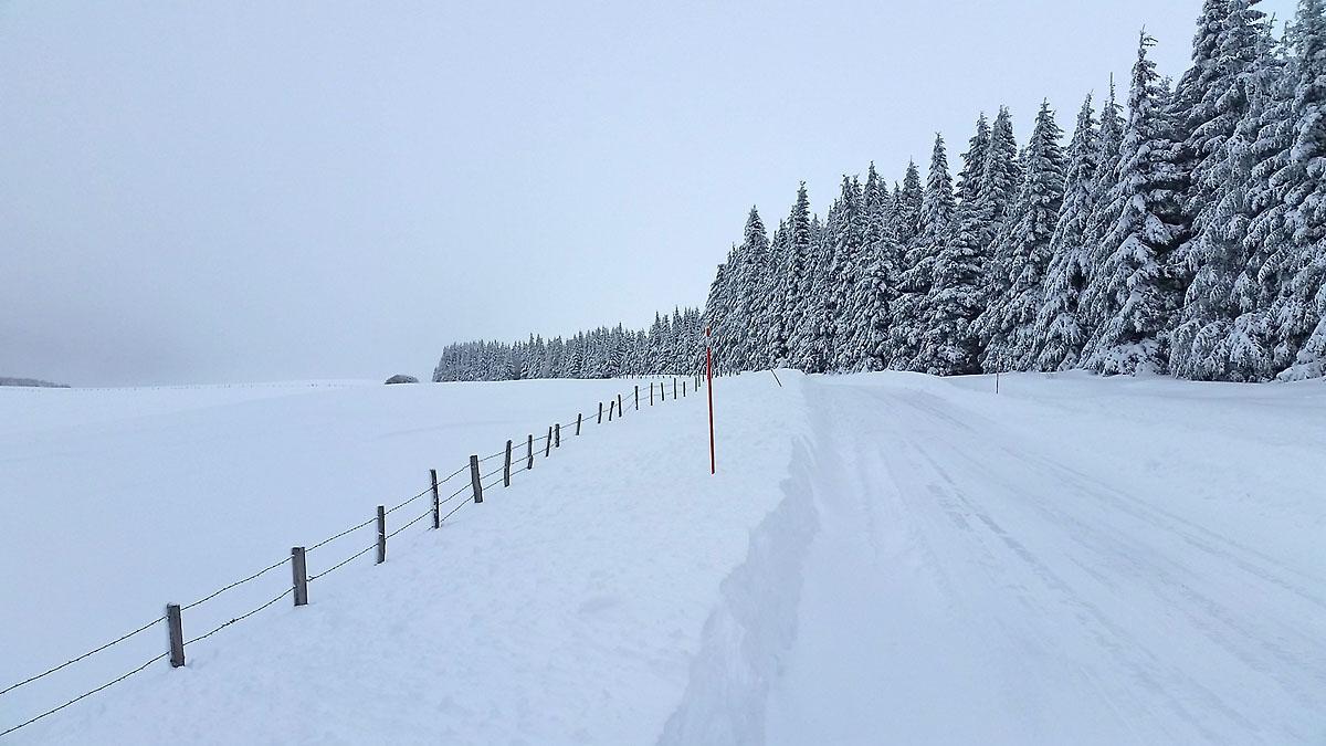 balade-photos-plateau-aubrac-neige