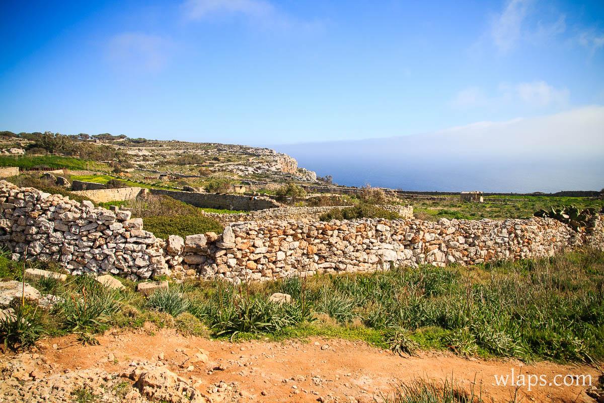 mars-malte-gozo-fleurs-voyage-5